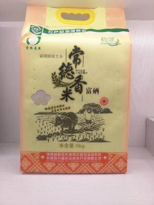 这是一张关于常德香米 一等品 晚稻 籼米 钱缘常德香米5公斤的产品图片