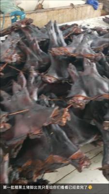 湖南省永州市冷水滩区腊猪脚 散装