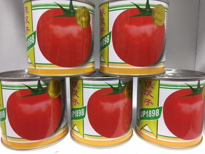这是一张关于红果番茄种子 ≥99.9% 杂交种 ≥95%的产品图片