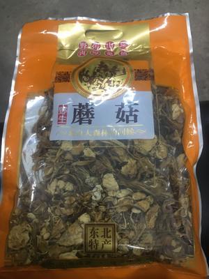 广东省广州市白云区野生茶树菇 干茶树菇 已开伞 6~8cm