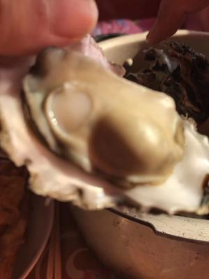 山东省烟台市海阳市太平洋牡蛎 3-4两/只 人工殖养