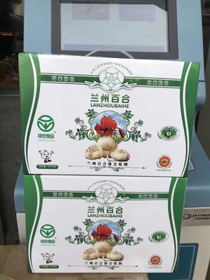 甘肃省兰州市城关区兰州百合 3cm-5cm