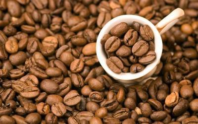 云南省西双版纳傣族自治州景洪市云南小粒咖啡豆