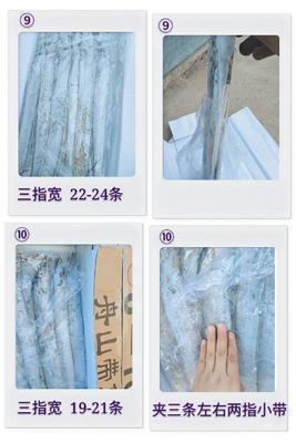 河北省唐山市曹妃甸区舟山带鱼 野生 0.5公斤以下