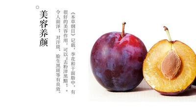 四川省阿坝藏族羌族自治州汶川县脆红李 50mm以上