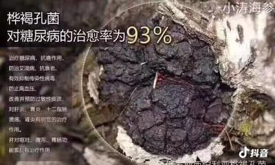 广西壮族自治区贺州市昭平县白桦茸 颗粒 袋装