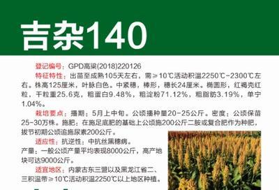 黑龙江省哈尔滨市道里区吉杂140高粱种子 杂交种 ≥80%