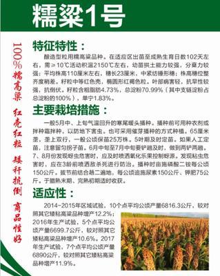 黑龙江省哈尔滨市道里区糯梁1号高粱种子 杂交种 ≥80%