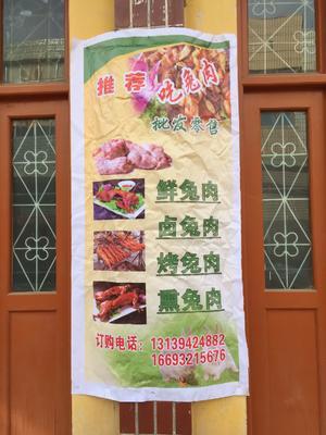 甘肃省定西市陇西县兔肉类 新鲜