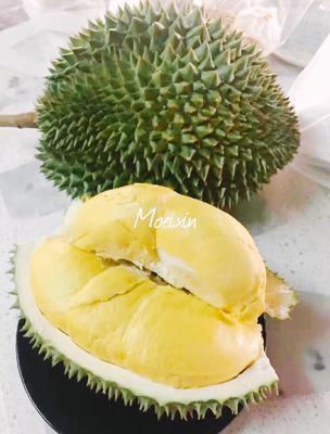 广东省广州市白云区泰国金枕榴莲 2 - 3公斤 90%以上