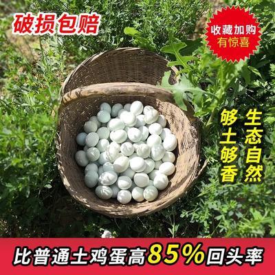 陕西省渭南市澄城县绿壳鸡蛋 食用 箱装