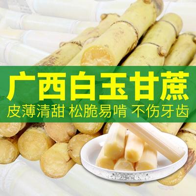 广西壮族自治区贵港市港北区木格白玉蔗 3 - 4cm 0.3m