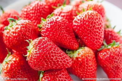 重庆大渡口区巧克力味草莓 30克以上