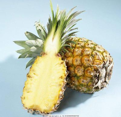 重庆大渡口区香水小菠萝 1 - 1.5斤