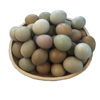 安徽省阜阳市太和县野鸡蛋 食用 散装