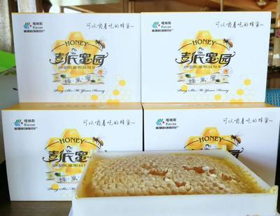 新疆维吾尔自治区阿勒泰地区布尔津县蜂巢蜜 100% 2年 盒装
