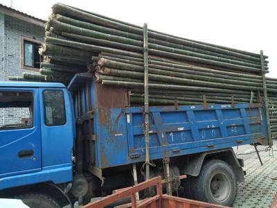 这是一张关于竹签 的产品图片