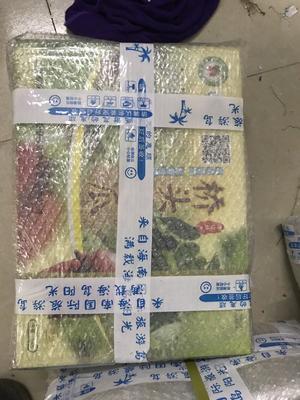 海南省海口市琼山区桥头地瓜 3两~6两 红皮