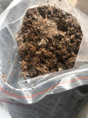 江西省新余市渝水区废食用菌棒