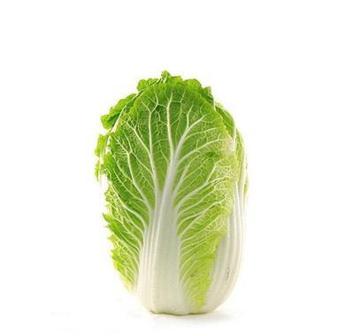 四川省绵阳市江油市黄心大白菜 3~6斤 二毛菜
