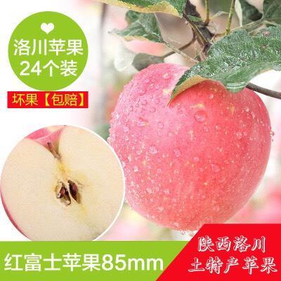 这是一张关于红富士苹果 85mm以上 条红 纸+膜袋 的产品图片