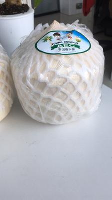 山东省淄博市张店区泰国香水椰 2 - 2.5斤