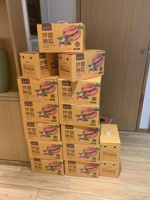内蒙古自治区通辽市奈曼旗济薯26号红薯 6两~1斤 红皮