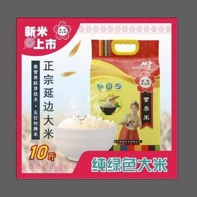 山东省青岛市城阳区吉粳81号大米 一等品 粳米 再生稻