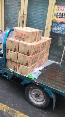 黑龙江省哈尔滨市松北区酸菜