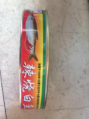 内蒙古自治区呼伦贝尔市满洲里市罐头鱼 18-24个月
