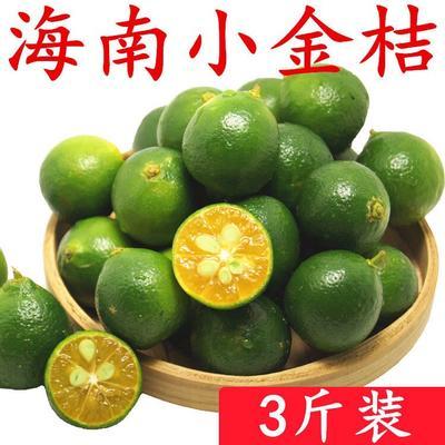 海南省三亚市吉阳区青金桔 2-3cm 1两以下 海南