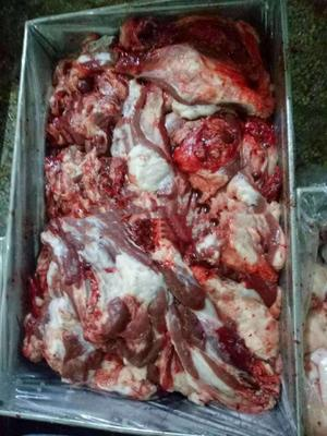 河北省石家庄市井陉县羊肉类 生肉 羊碎肉