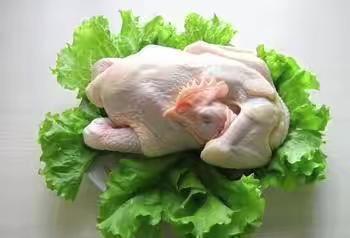 山东省枣庄市滕州市鸡肉类 新鲜