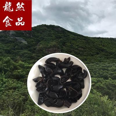 黑龙江省牡丹江市林口县东北黑木耳 干木耳 特级