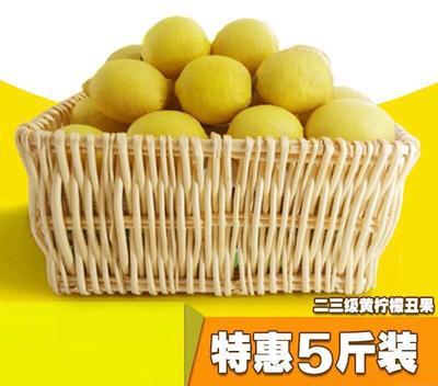 四川省资阳市安岳县安岳柠檬 2.7 - 3.2两 花皮果