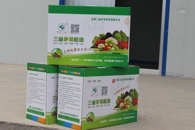 甘肃省定西市临洮县北方小油菜 2~3两