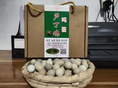 河北省石家庄市行唐县芦丁蛋 简包装 食用