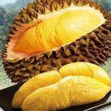 上海宝山区猫山王榴莲 3 - 4公斤 90%以上