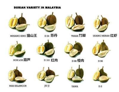 上海宝山区马来西亚红肉榴莲 4 - 5公斤 80 - 90%以上