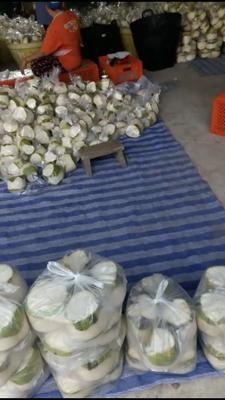 这是一张关于泰国椰青 2 - 2.5斤 的产品图片