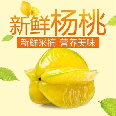 海南省三亚市海棠区甜杨桃 3 - 4两