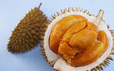 上海宝山区马来西亚红肉榴莲 80 - 90%以上 4 - 5公斤