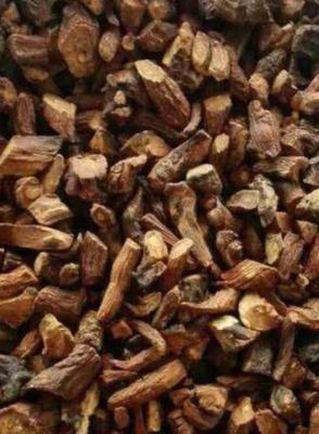 这是一张关于蒲公英 的产品图片