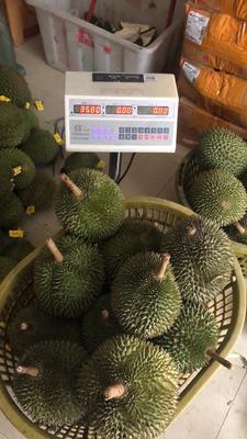 广西壮族自治区防城港市东兴市干尧榴莲 2公斤以下 90%以上
