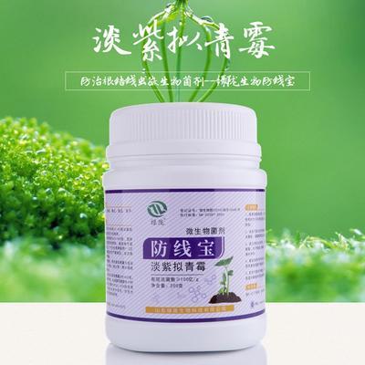 这是一张关于淡紫拟青霉 的产品图片