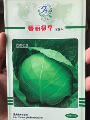 这是一张关于圆包菜种子 杂交种 ≥95% 碧绿极早 极早熟品种的产品图片