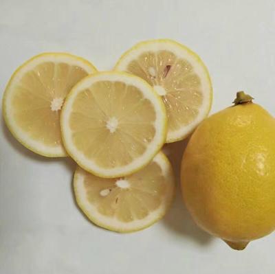 这是一张关于尤力克柠檬 3.3 - 4.5两 的产品图片
