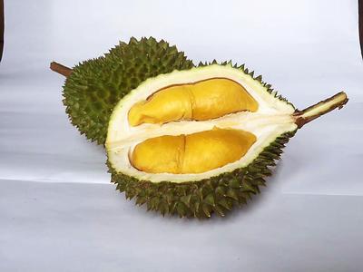 广东省广州市番禺区猫山王榴莲 80 - 90%以上 2 - 3公斤