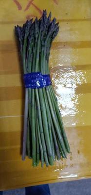 上海嘉定区绿芦笋 20~30cm