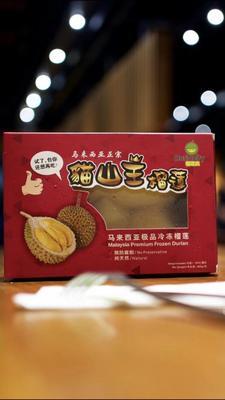 广东省广州市番禺区猫山王榴莲 90%以上 10公斤